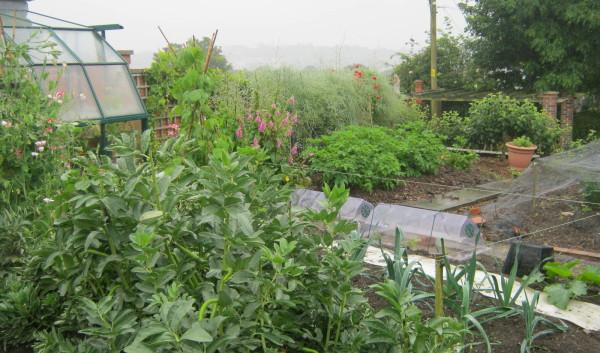 garden_competition_2012_49_20170303_1566