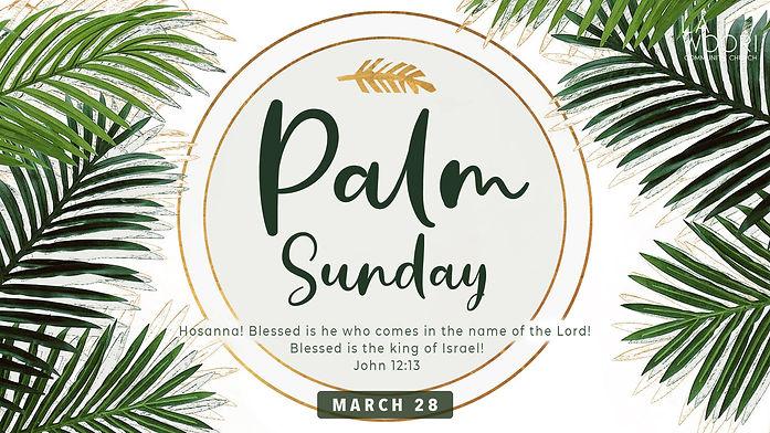 Palm Sunday2.jpg