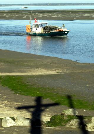 Retour des parcs, port ostréïcole de Gujan-Mestras