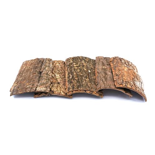 杜仲块 (Eucommia bark/Eucommia ulmoides Oliv)