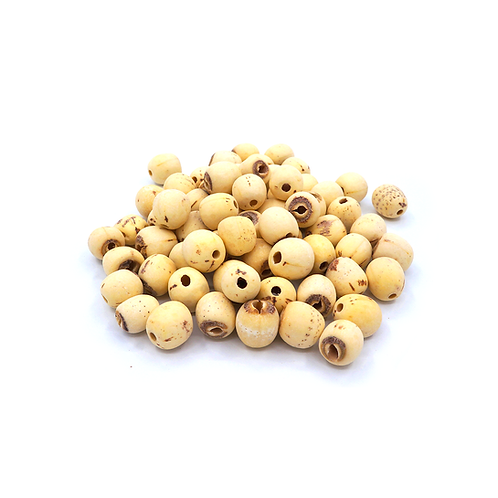 莲子 (Lotus seed/Semen Nelumbinis)