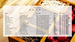 Fruits,seeds_1