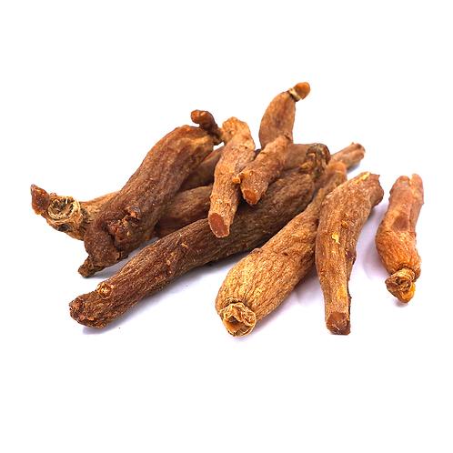 红参光支 (Red ginseng main root)