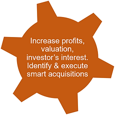 Wheel 3 - Increase Profits, Valuation and investor interest.png