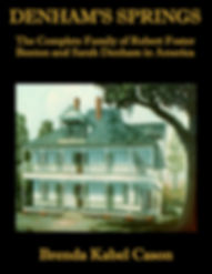 DENHAM'S_SPRINGS_Book_Cover_1.jpg
