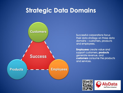 Strategic Data Domains
