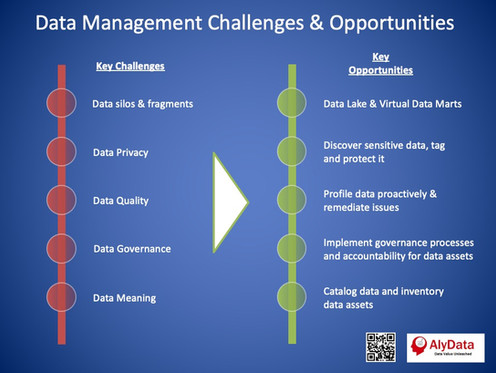 AlyData - Data Management Challenges & O