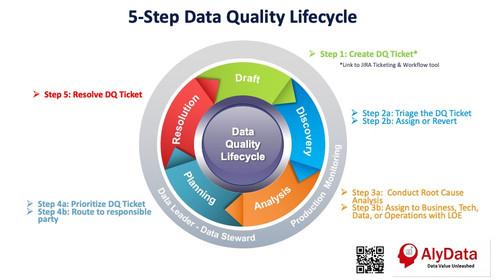 AlyData - Data Quality Lifecycle