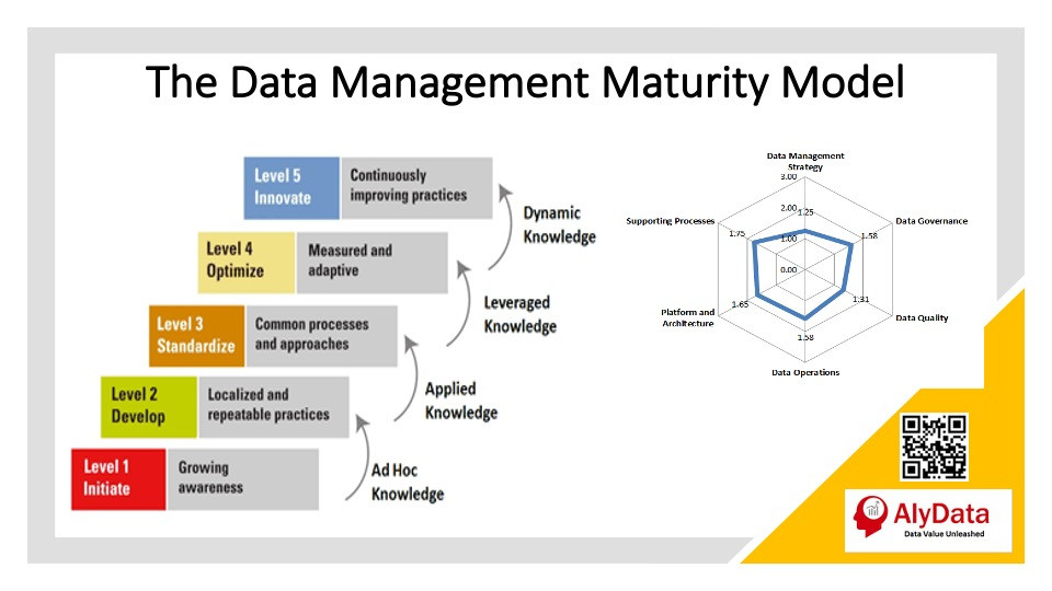 AlyData Data Mgmt Maturity Model