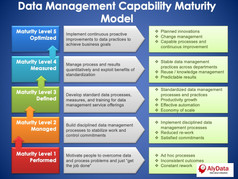 AlyData Capability Maturity Model