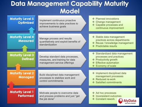 AlyData Capability Maturity Model
