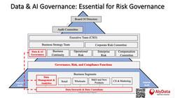 AlyData - Data Governance & Risk Governance