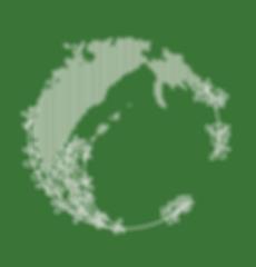 raster colour logo.png
