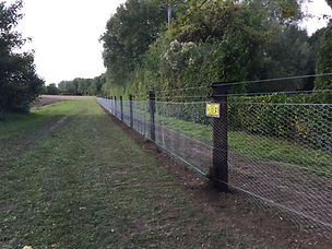 rabbit proof creosote fencing colchester