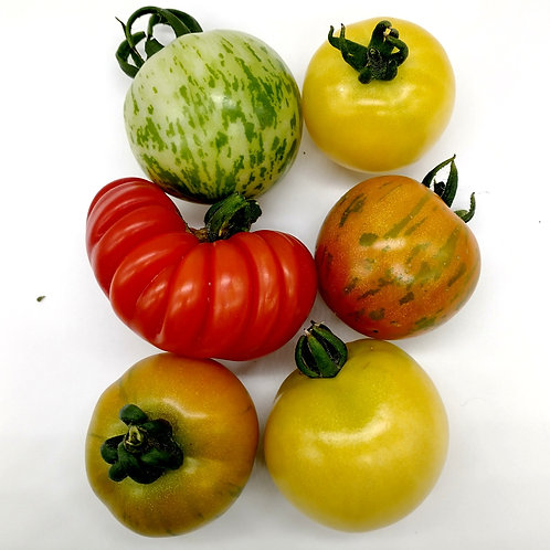 Speciality Tomatoes - Organic