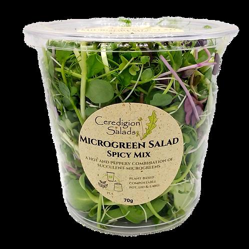Microgreen Salad - Spicy Mix