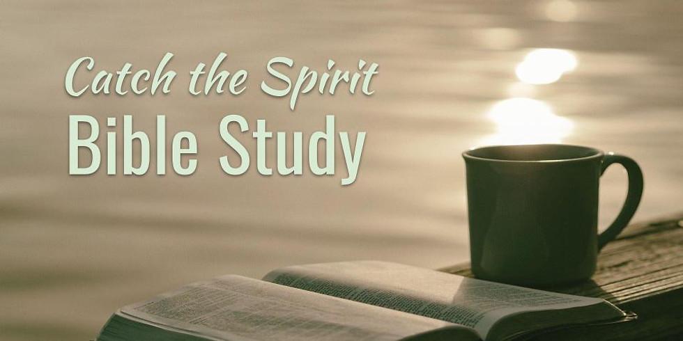 Catch the Spirit Bible Study
