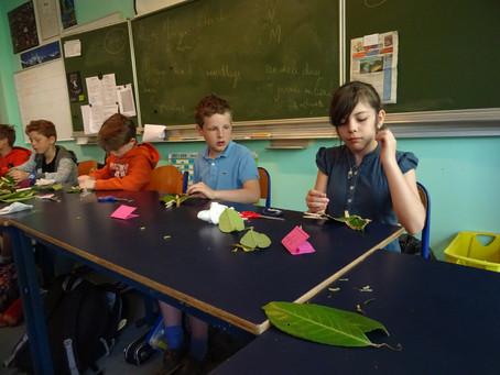 L'atelier végétaux des P5D