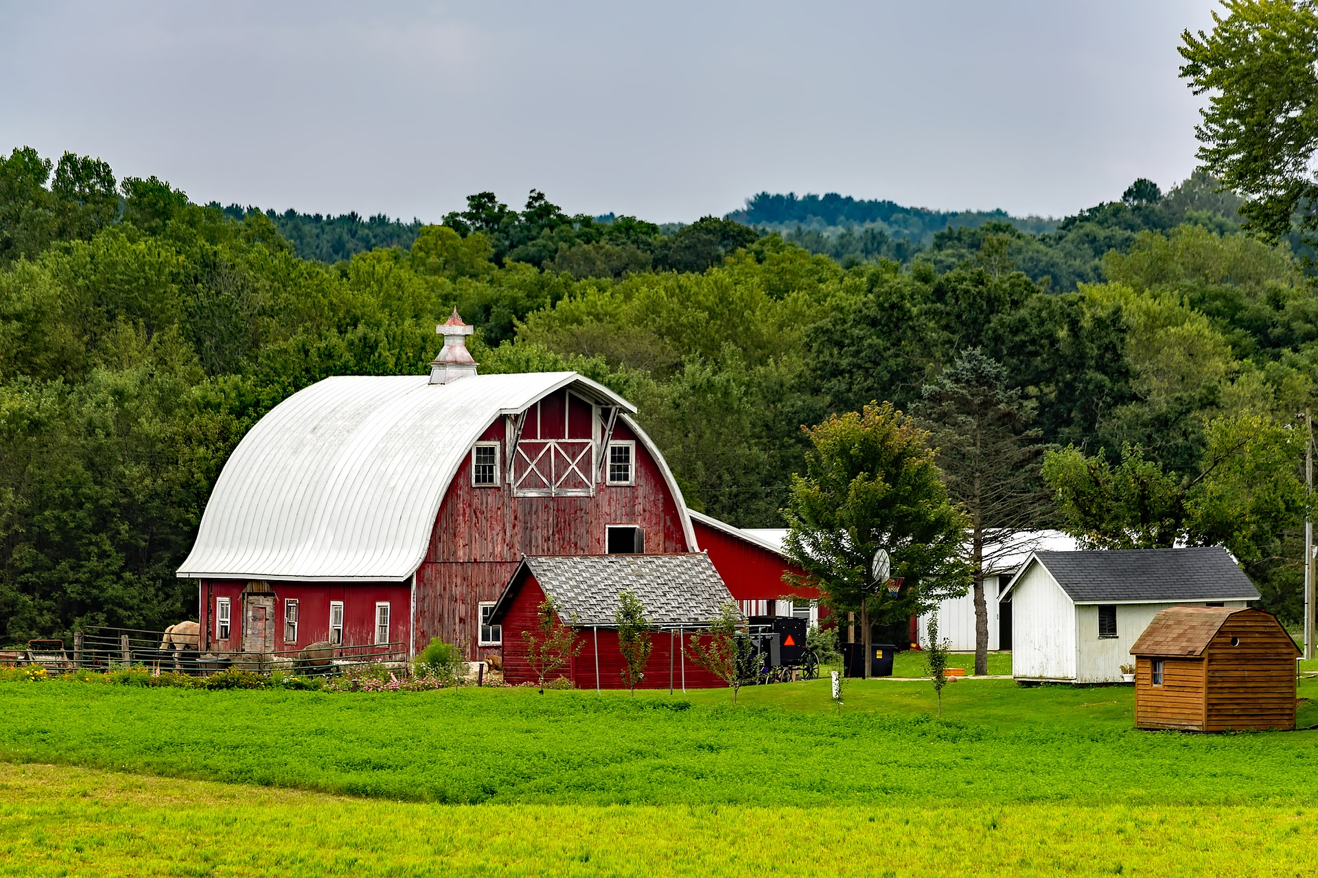 Farm Barn 4