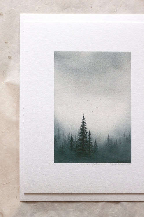 Winter Solace Print