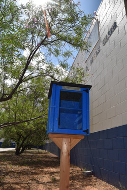 Blue Little Library