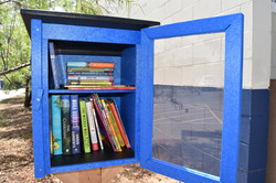 Two level little library