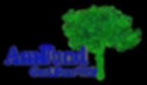 AmFund LogoTransparent Background.png