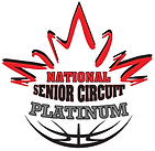 NSC-Platinum-2020-1.png