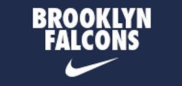 BrooklynFalcons_Icon.jpg