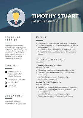 Modern Professional Resume(1).png