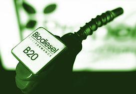 biodiesel copy.jpg
