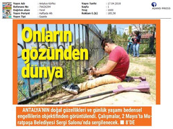 Antalya Körfez
