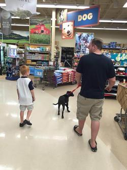 Max shopping for toys.JPG