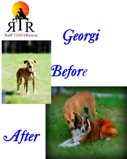Georgi before and after.jpg
