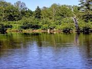 photos400px-riviere.jpg