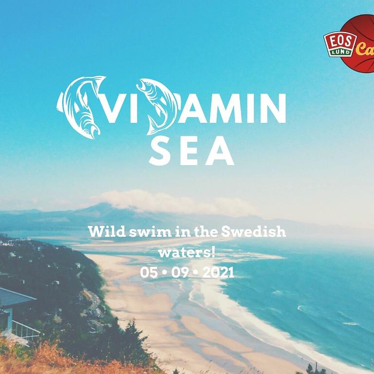 Vitamin Sea - Local Discoveries