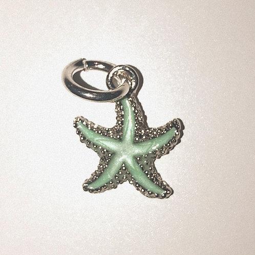 Strikkemarkør sjøstjerne