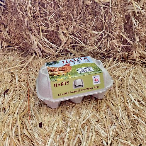 Harts Large Free Range Eggs (6 Box)