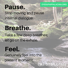 Pause - breathe - feel.png