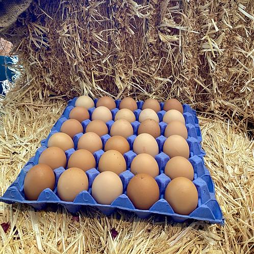 Harts Large Free Range Eggs (Tray of 30)
