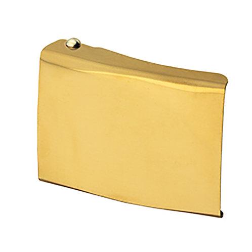 EDWIN Koppelschloss neutral, gold