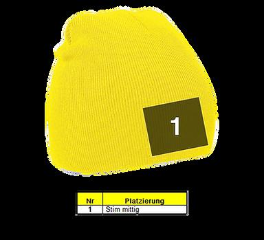 Mütze, Kopfbedeckungen