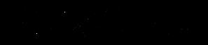 DerHochzeitsshuttle_Logo