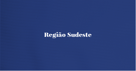 JUST_SITE_ASSETS_REGIAO SUDESTE.png
