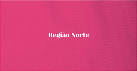 JUST_SITE_ASSETS_REGIAO NORTE.png