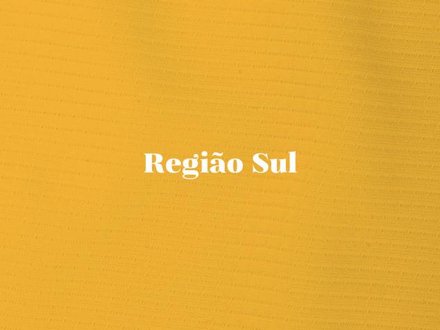 REGIÃO_SUL.jpg