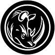 броня лого