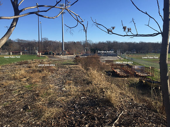 Glen Rock Dog Park (BEFORE)