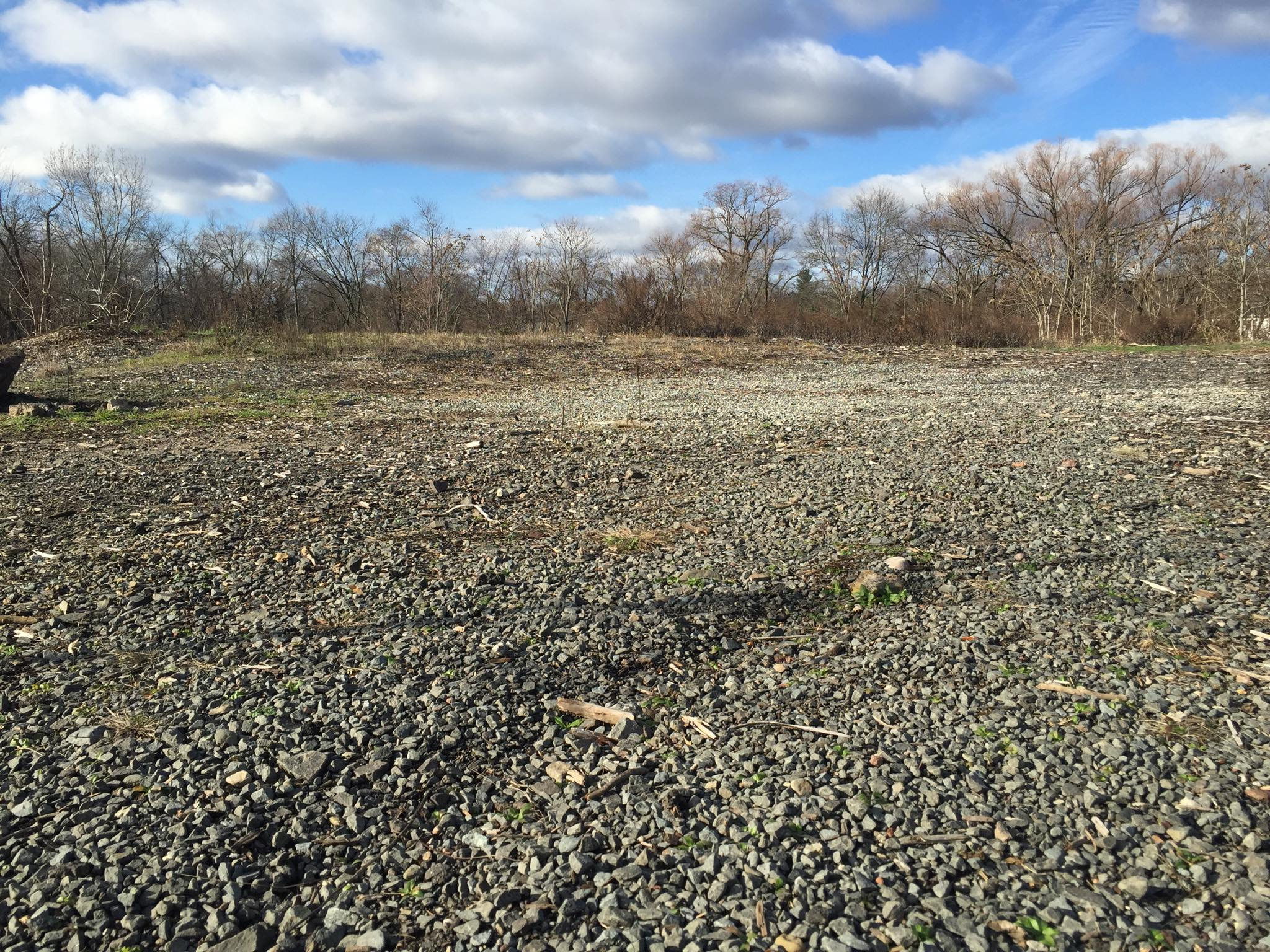 Glen Rock Dog Park - BEFORE