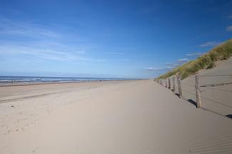 TMWRK Strand